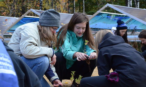 Holy Rosary students from Duluth plant pollinator habitat around solar installation at Laurentian Environmental Learning Center