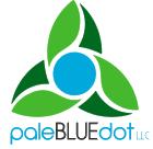 paleBLUEdot LLC